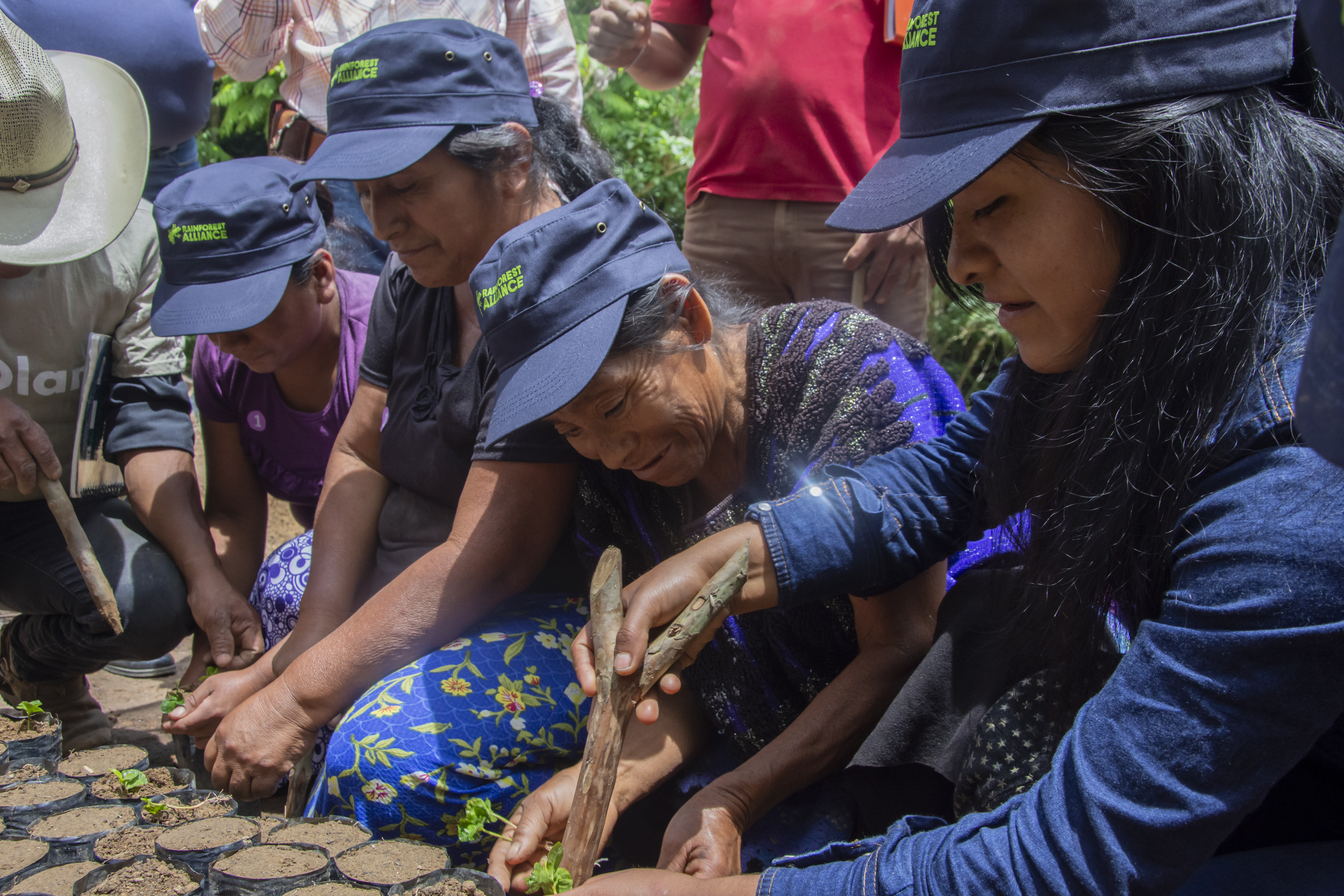 Men and women sit together in a close group, planting seeds in small containers.