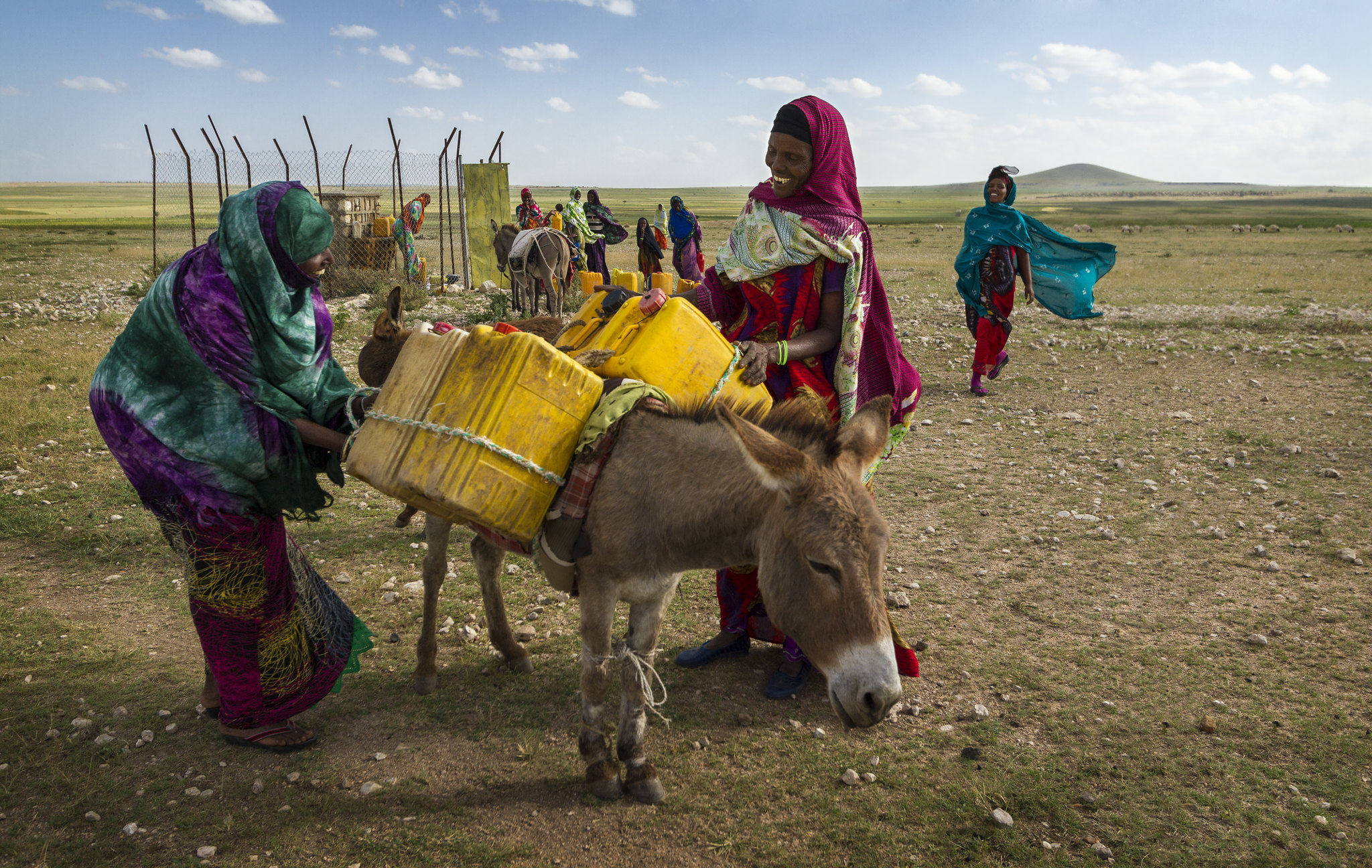 Women work together to tie jerry cans full of water onto a donkey. Rurujis, Somali Region, Ethiopia.