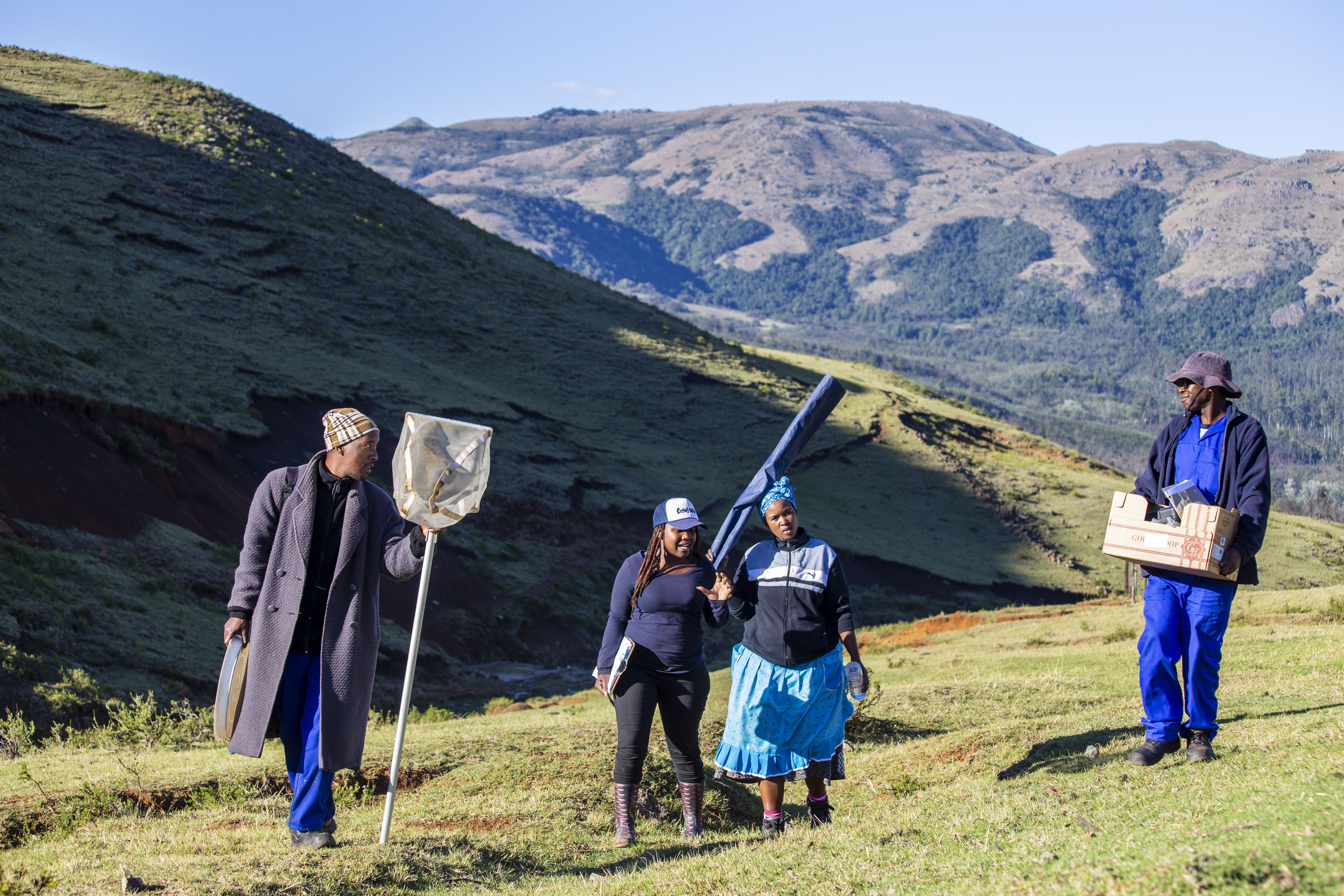 Four people holding tools walk along a hillside in front of a mountainous background.