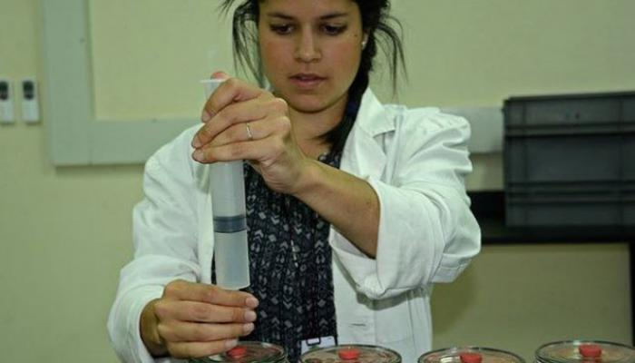 Woman scientist measure samples in a laboratory.