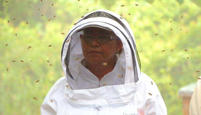 A woman wearing a beekeeper suit stands among many flying bees.