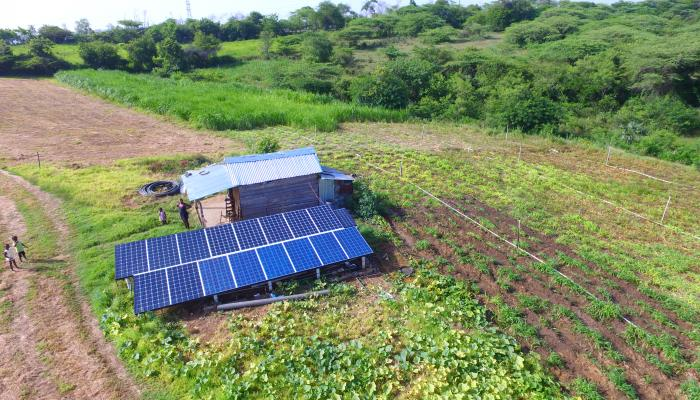 An aerial/drone angle on a small house with solar PV panels installed next to it and agricultural fields surrounding it.
