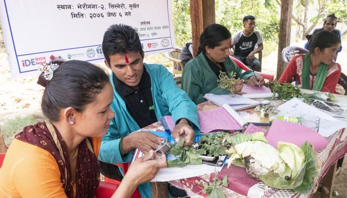 Man and women sitting at a table inspecting vegetables.
