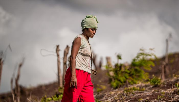 Woman farmer in a slash-and-burn area in Palawan, Philippines