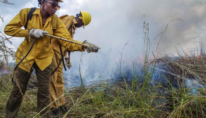 Two men spray water on a brush fire.