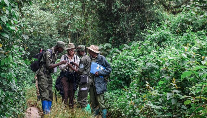 In a heavily forested area, three men and one woman huddle together to look at a notebook.