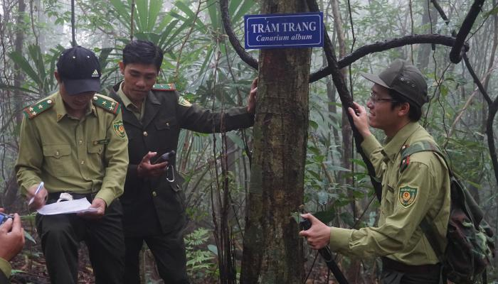 Forest rangers moniror biodiversity conservation at Bac Ma National Park