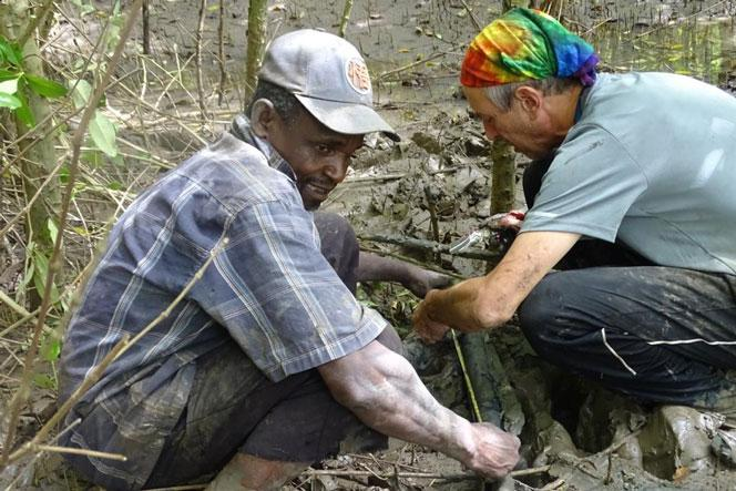 SWAMP U.S. Forest Scientist Carl Trettin and a community member working in the Rufiji Delta sorting a retrieved soil core for carbon analysis during an inventory data collection mission.