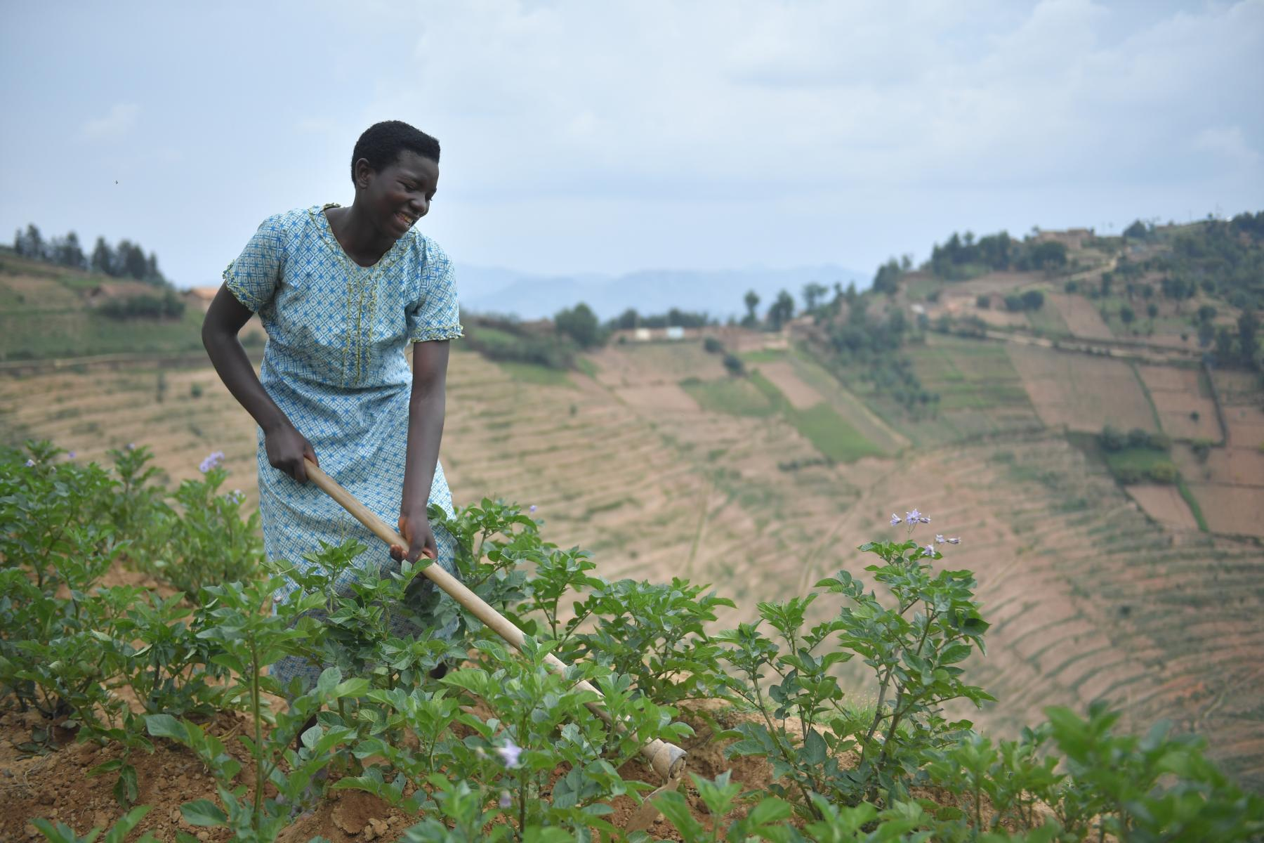 A woman stands on the edge of a high terraced field with a hoe in hand.