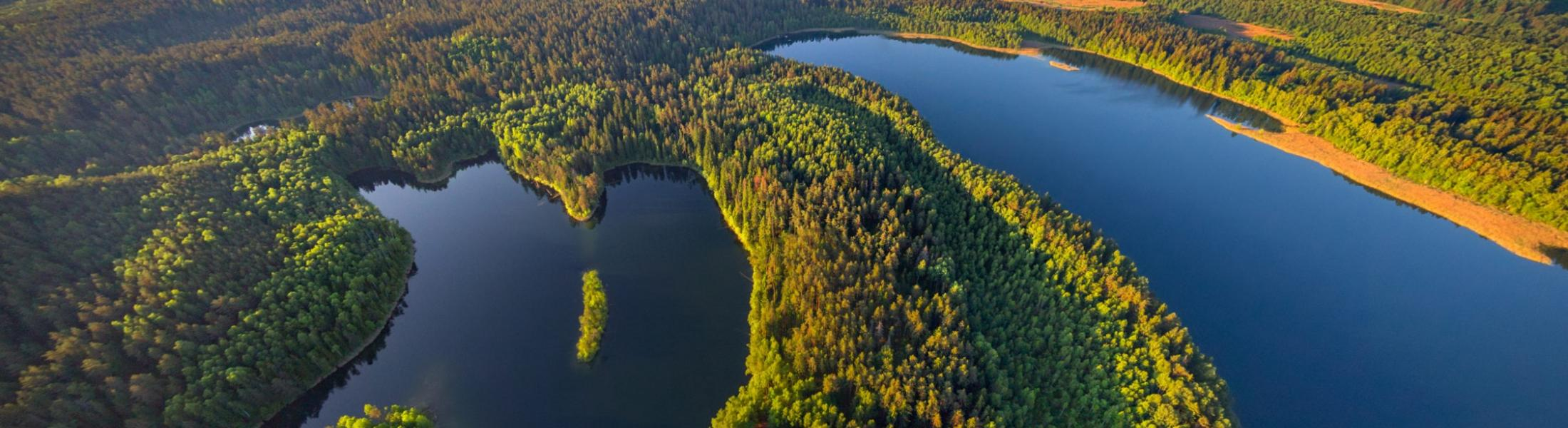 Overhead view of forests and water bodies in Belarus