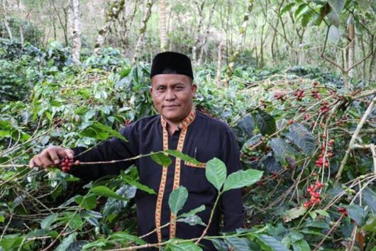 Indonesian coffee farmer stands in his field.