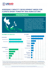 Assessing Capacity Development Needs for Climate-Smart Forestry and Agriculture - Snapshot: Indonesia