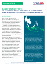Recommendations to Accelerate Private Investments in Climate-Smart Agriculture and Forestry Production in Indonesia