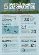 5 Reasons Stopping Mangrove Deforestation Makes a Whole Lot of Sense for Climate Change Mitigation in Indonesia