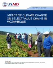 Impact of Climate Change on Select Value Chains in Mozambique