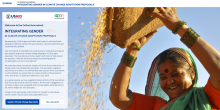 Online Sourcebook: Integrating Gender in CCA Proposals