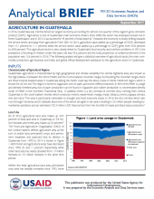 Analytical Brief: Agriculture in Guatemala