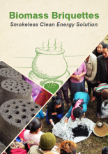 Biomass Briquettes: Smokeless Clean Energy Solution