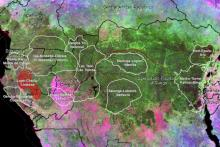 Map of lands that are part of CARPE's Congo Forest Basin Partnership
