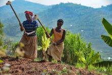 CCAFS Rwanda Blog