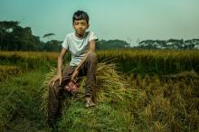 Son of Bangladeshi rice farmer