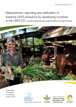 Measurement, reporting and verification of livestock GHG emissions by developing countries in the UNFCCC: current practices and opportunities for improvement