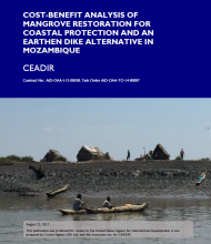 Cost-Benefit Analysis of Mangrove Restoration for Coastal Protection and an Earthen Dike Alternative in Mozambique