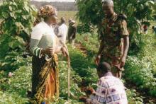 Group inspects tree seedlings, Upper Imenti Forest, Kenya