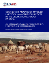 Cost-Benefit Analysis of Improved Production Practices for Ruminant Livestock in the Oromia Highlands of Ethiopia