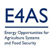 E4AS logo