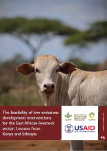 The Feasibility of Low Emissions Development Interventions for the East African Livestock Sector: Lessons from Kenya and Ethiopia