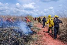 Fire management training outside of Mushie, Democratic Republic of the Congo