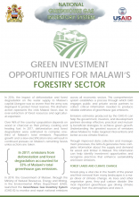 Green Investment Opportunities for Malawi's Forestry Sector photo