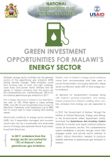 Green Investment Opportunities in the Energy Sector