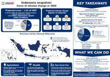 Indonesia snapshot: costs of climate change in 2050