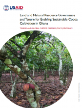 Land and Natural Resource Governance and Tenure for Enabling Sustainable Cocoa Cultivation in Ghana