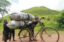 While only 5% of Malawi's rural population use charcoal, it is almost exclusively rural people that produce charcoal illegally from Malawi's remaining forests to meet the high and growing urban demand.