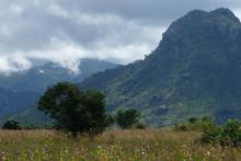 Mountainous landscape of Malawi with tree-filled field in foreground.