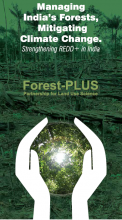 Managing India's Forests, Mitigating Climate Change: Strengthening REDD+ in India
