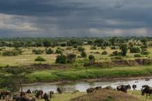 A rainstorm moves over the Mara River, Serengeti, Tanzania.