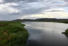 The Mara River flowing through the Mara wetlands in Tanzania.