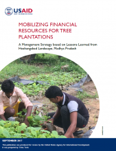 Mobilizing Financial Resources for Tree Plantations: A Management Strategy Based on Lessons Learned from Hoshangabad Landscape, Madhya Pradesh