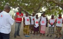 Mozambique community health workers