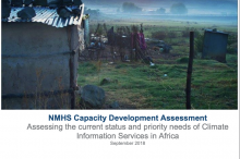 NMHS Capacity Assessment