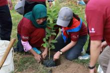 Women planting a young tree, Southeast Asia.