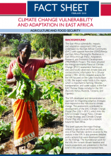 Climate Change Vulnerability and Adaptation in East Africa: Agriculture and Food Security