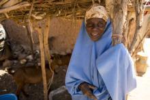 Niger, 2014