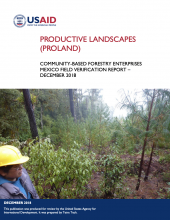 Productive Landscapes Community-Based Forestry Enterprises Mexico Field Verification Report photo