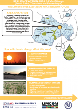 Case Study: Ideas for a Resilient Future in the Limpopo River Basin - Pafuri Triangle