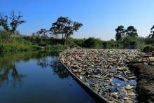 River in Durban